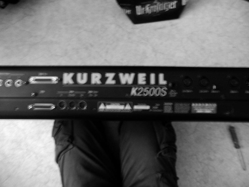 kurzweil from rear